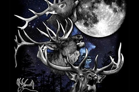3 Elk Moon